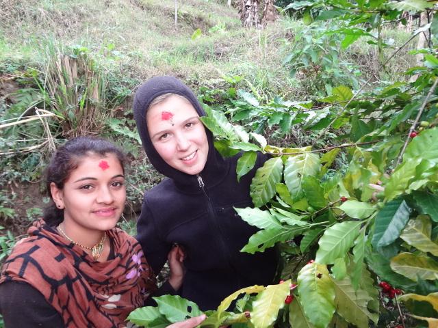 Agricultural volunteering in Nepal